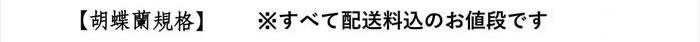 胡蝶蘭規格